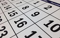 wahlkalender